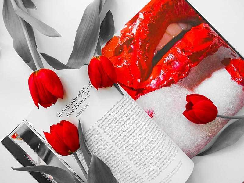 Face Paint Lisa Eldridge Red